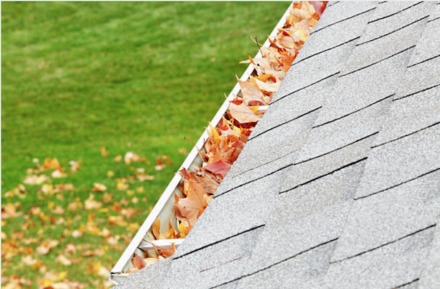 gutter cleaning novi